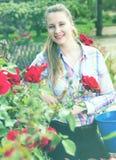 Mujer joven que lleva a cabo una cesta y una situación en el parque de rosas Foto de archivo