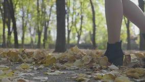 Mujer joven que lleva los zapatos negros con los talones que caminan en las hojas de otoño en parque en un día soleado en la cáma almacen de video