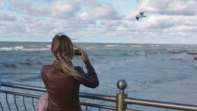 Mujer joven que mira las gaviotas en el mar almacen de video
