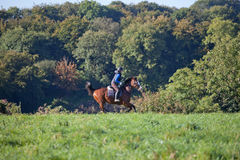 Mujer joven que monta un caballo a través del campo abierto Fotografía de archivo libre de regalías