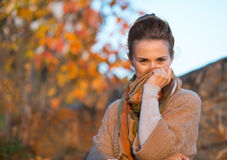 Mujer joven que oculta en bufanda por la tarde del otoño Imagen de archivo