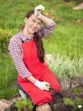 Mujer joven que planta las flores Foto de archivo libre de regalías