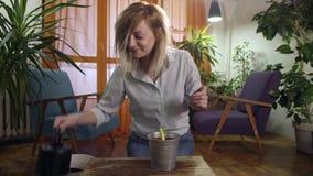 Mujer joven que planta y que riega un jacinto en hogar moderno metrajes