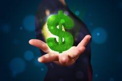 Mujer joven que presenta la muestra de dólar que brilla intensamente verde Imágenes de archivo libres de regalías