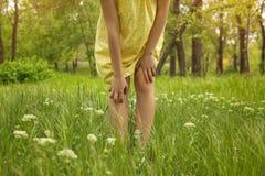 Mujer joven que rasguña la pierna al aire libre Alergia estacional imagen de archivo libre de regalías