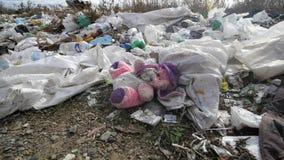 Mujer joven que recoge desperdicios en el voluntario de los jóvenes de ForestÑŽ Concepto de la ecología Fotos de archivo