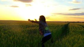 Mujer joven que salta en un campo de trigo amarillo en un fondo de la puesta del sol el concepto de libertad Mujer feliz al aire  metrajes