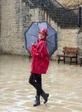 Mujer joven que se coloca en la lluvia Foto de archivo libre de regalías