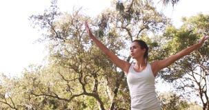 Mujer joven que se realiza estirando ejercicio metrajes