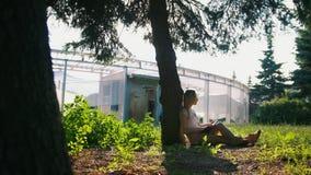 Mujer joven que se sienta debajo del árbol que lee un libro en parque urbano en la puesta del sol metrajes