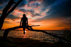Mujer joven que se sienta en el árbol que mira la cuesta fantástica hermosa fotografía de archivo