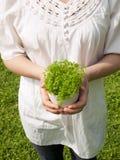 Mujer joven que sostiene la planta potted Imágenes de archivo libres de regalías