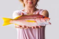 Mujer joven que sostiene pescados frescos del pargo rojo Foto de archivo