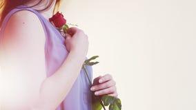 Mujer joven que sostiene una rosa roja Imagen de archivo libre de regalías