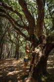 Mujer joven que sube el árbol enorme foto de archivo
