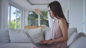 Mujer joven que trabaja en el ordenador con el cojín del dibujo en chalet encendido almacen de video