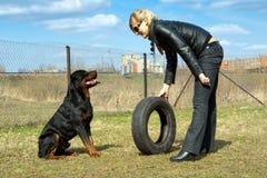 Mujer joven rubia con el rottweiler en el entrenamiento. Foto de archivo libre de regalías