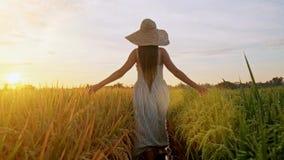 Mujer joven sensual en el vestido blanco que goza en la lavanda violeta archivada en la puesta del sol hermosa del verano Goce jo metrajes