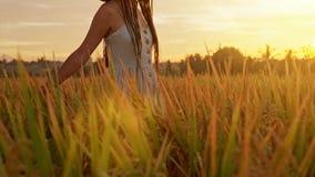 Mujer joven sensual en el vestido blanco que goza en la lavanda violeta archivada en la puesta del sol hermosa del verano Goce jo almacen de metraje de vídeo
