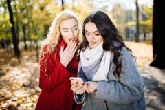 Mujer joven sonriente dos que se sienta en parque y que mira el teléfono Fotos de archivo libres de regalías