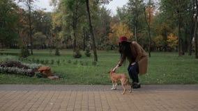 Mujer joven sonriente que frota ligeramente el perro en parque del otoño metrajes