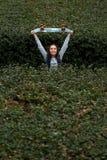 Mujer joven sonriente que salta entre los arbustos verdes Fotografía de archivo