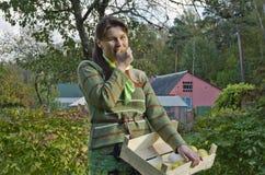 Mujer joven y manzanas imagen de archivo libre de regalías