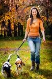 Mujer joven y sus perros Fotos de archivo