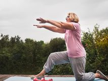 Mujer linda, adulta que hace ejercicio en el parque en un fondo del cielo azul y árboles verdes en un claro, día soleado Concepto imagen de archivo