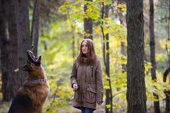 Mujer linda joven que juega con el perro de pastor alemán al aire libre en el bosque del otoño, cierre para arriba Fotos de archivo
