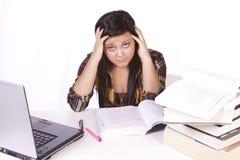 Mujer linda que estudia en su escritorio Imágenes de archivo libres de regalías