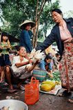 mujer local que vende el pollo y las frutas en el mercado del pueblo fotografía de archivo libre de regalías