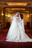 Mujer lujosa hermosa joven en el vestido de boda que presenta en interior lujoso Novia elegante magnífica con velo largo Aislado  Foto de archivo
