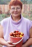 Mujer madura feliz con la cosecha de las verduras Imágenes de archivo libres de regalías