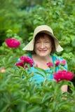 Mujer madura feliz en planta del paeony Imagen de archivo