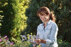 El cultivar un huerto maduro hermoso de la mujer Fotografía de archivo
