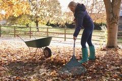 Mujer madura que rastrilla a Autumn Leaves In Garden fotografía de archivo