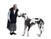 Mujer madura que se coloca con el perro del gran danés Imagen de archivo libre de regalías
