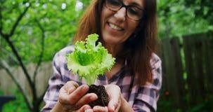 Mujer madura que sostiene una planta en el jardín 4k almacen de metraje de vídeo