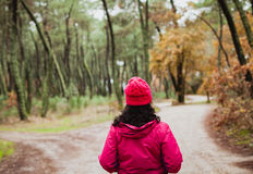 Mujer madurada que camina en el bosque Imagen de archivo libre de regalías