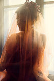 Mujer magnífica con el mantón translúcido rojo Imagen de archivo libre de regalías