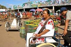 Mujer maya, mercado de la fruta, Yucatán, México Imagen de archivo libre de regalías