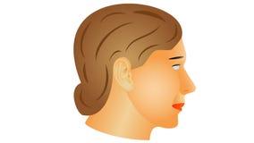 Mujer mayor ilustración del vector