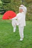 Mujer mayor china Taichi de ejecución al aire libre Imágenes de archivo libres de regalías