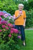 Mujer mayor con Cane Holding Flowers en el jardín Fotografía de archivo