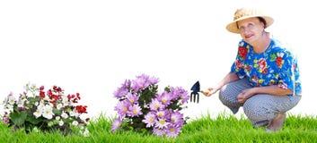 Mujer mayor con las flores que cultivan un huerto Fotos de archivo