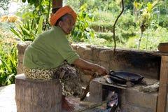 Mujer mayor en la plantación de café. Fotos de archivo