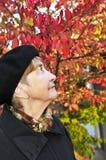 Mujer mayor en parque de la caída foto de archivo