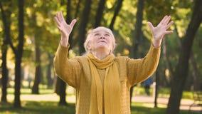 Mujer mayor extremadamente feliz que dispersa el dinero, aumento de la pensión, triunfo de la lotería almacen de metraje de vídeo