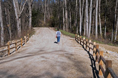 Mujer mayor que camina abajo de una trayectoria de bosque Imagen de archivo
